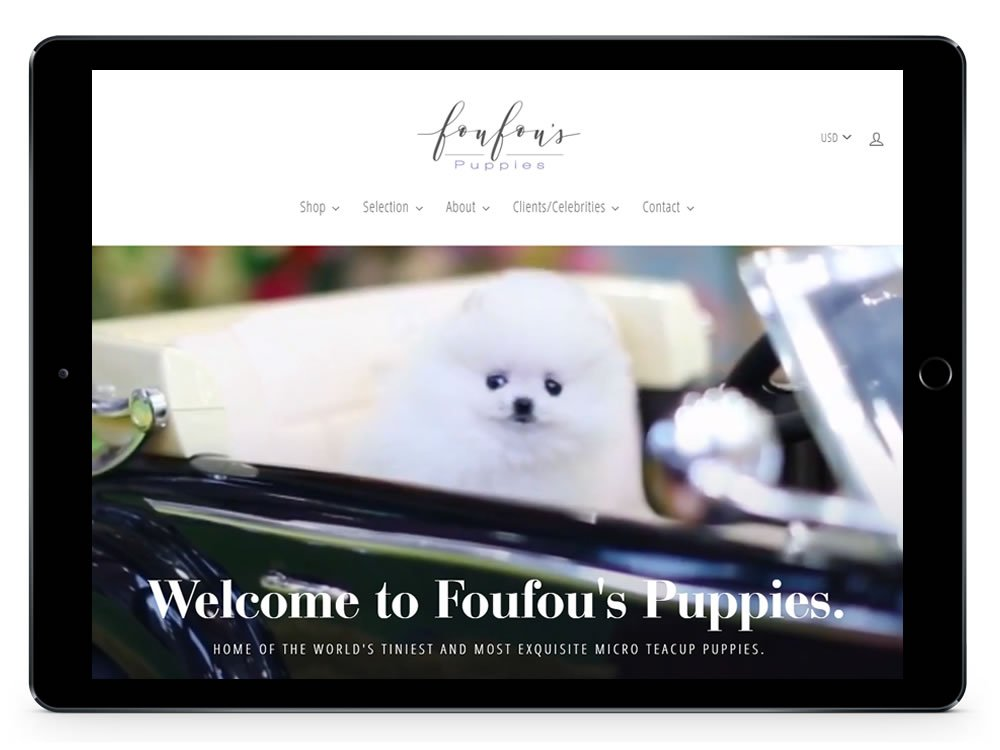 Teacup Puppies Web Development